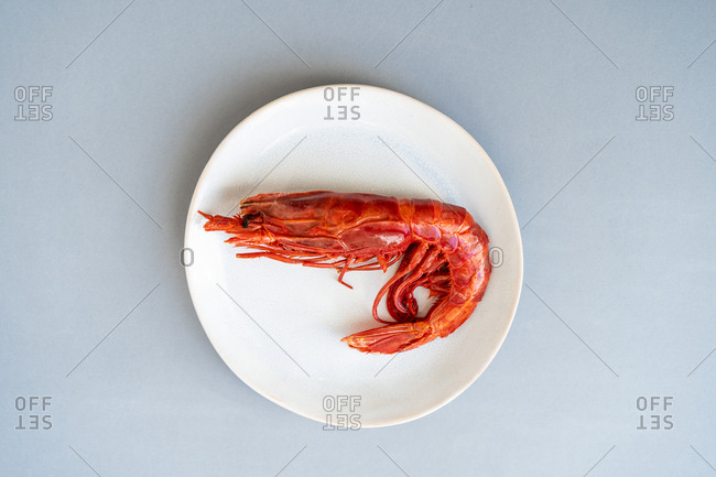 Prawn lying on ceramic plate on blue background
