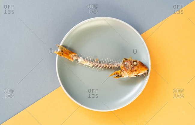 Skeleton of yummy consumed fish lying on ceramic plate on yellow background