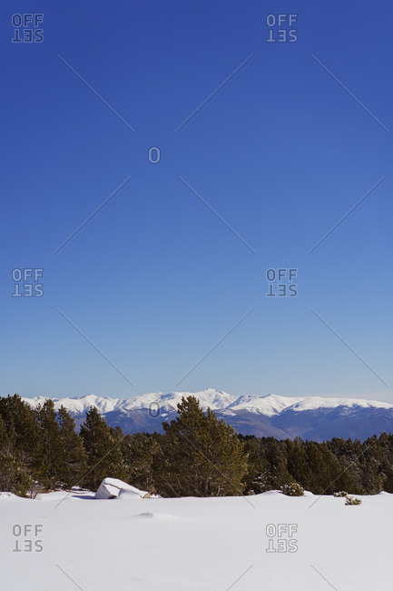 Beautiful countryside trees growing against mountain range and cloudless blue sky in fantastic winter nature