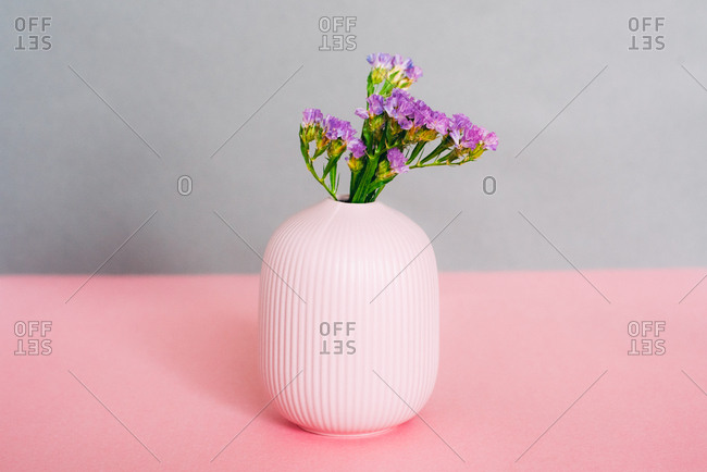 Violet sea lavender flowers in a pink and grey background