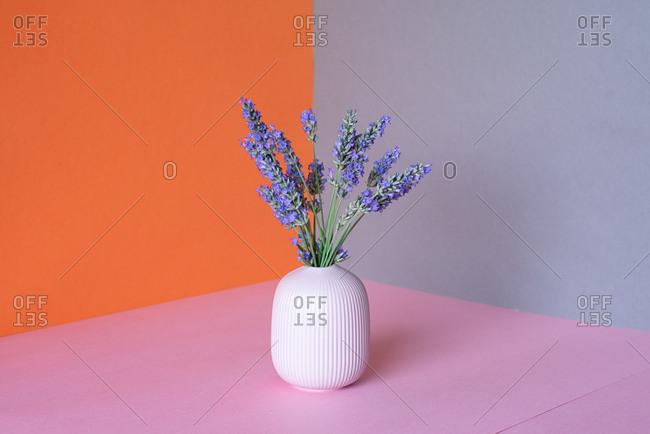 Vase of lavender flower in a multicolor background