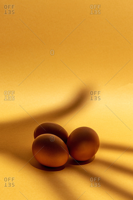Fresh raw eggs on brown background. Effects of lights and shadows. Isolated