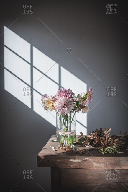 Wooden table with bouquet of pink chrysanthemums in vase with water between fallen petals near white wall with sunshine