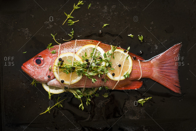 A Red Snapper fish prepared with Lemon Thyme and black pepper tied in a parcel on a baking sheet
