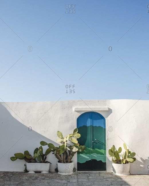 White wall with door colored and cactus pots