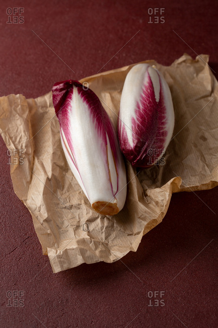 Chicory on paper - Offset Collection