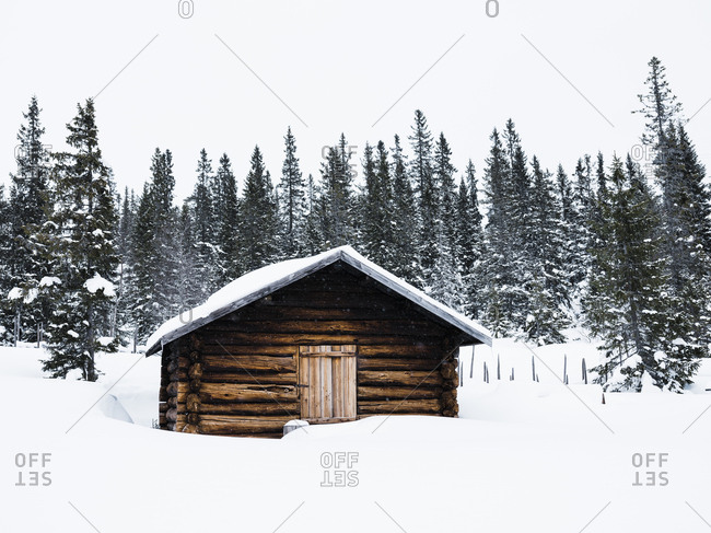Small log cabin in the snow covered forest