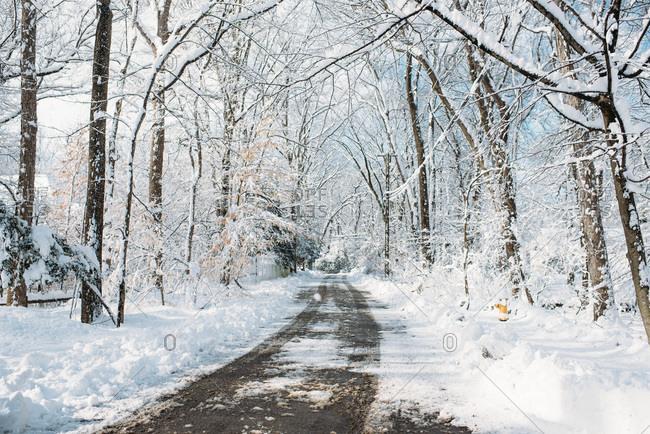 A snowy street in winter