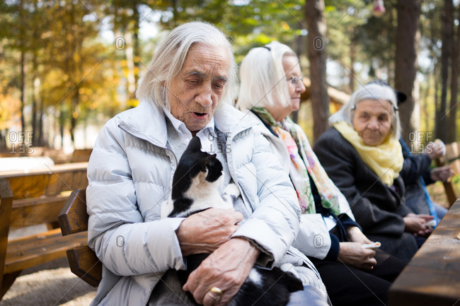 Senior citizens enjoy a day at the park