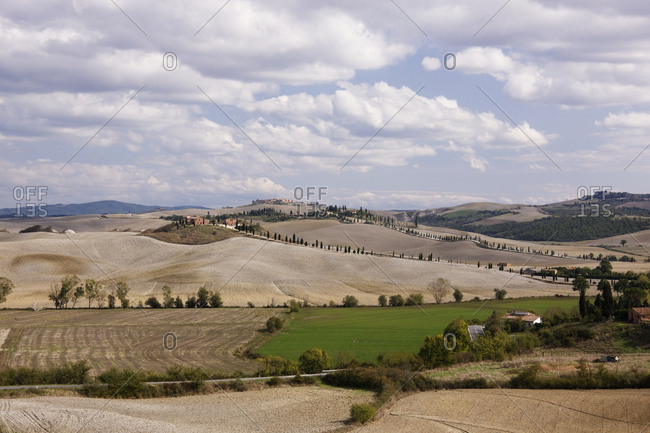 Farm Fields,Tuscany, Italy