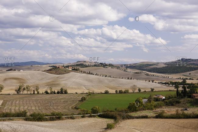 Farm Fields,Tuscany, Italy