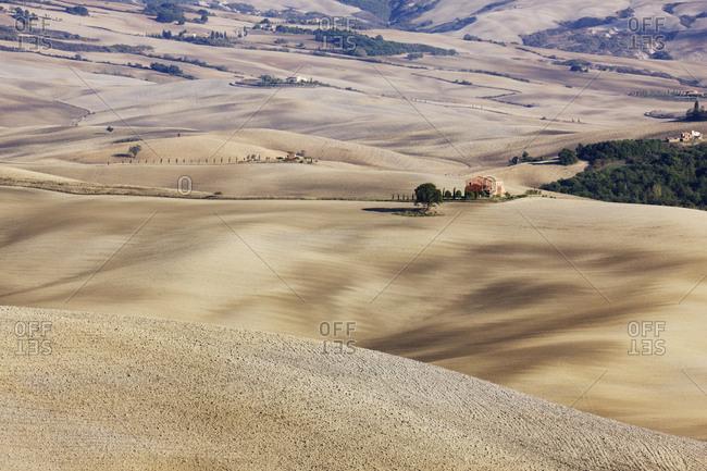 Farm Fields,Val D'Orcia, Tuscany, Italy