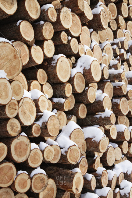 A pilie of wooden logs with snow on them.