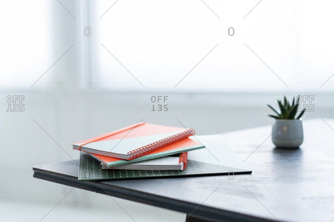 Stack of notebooks and potted plant on a table