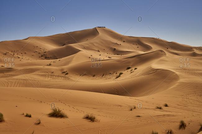Morocco- desert dunes