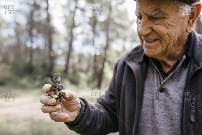 Smiling senior man holding found mushrooms