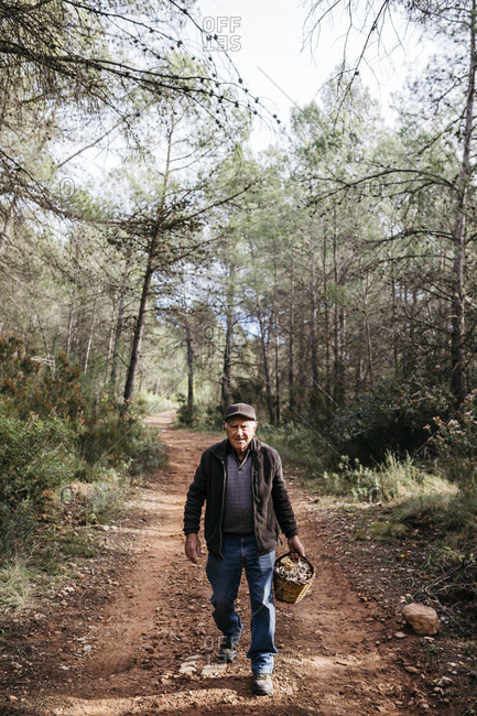 Portrait of smiling senior man walking with basket full of mushrooms in the forest
