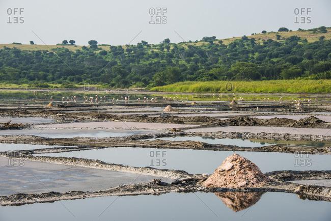 Africa- Uganda- Jinja-