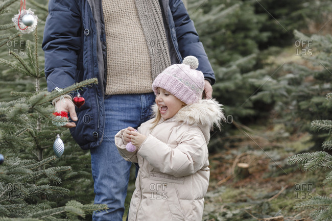 Happy girl with father decorating Christmas tree on a plantation