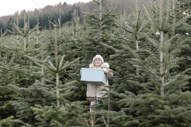 Girl carrying gift box on a Christmas tree plantation