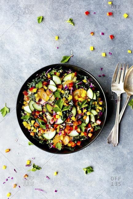 Kale Vegetable Salad with Parsley Pesto Vinaigrette.  Photographed on a grey background.