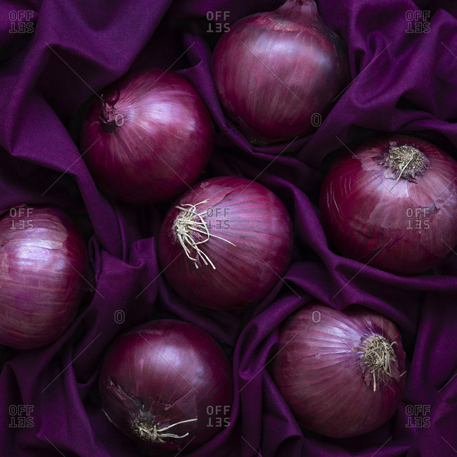 Fresh Red Onions on a purple background