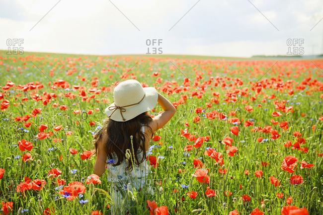 Girl walking in sunny, rural red poppy field