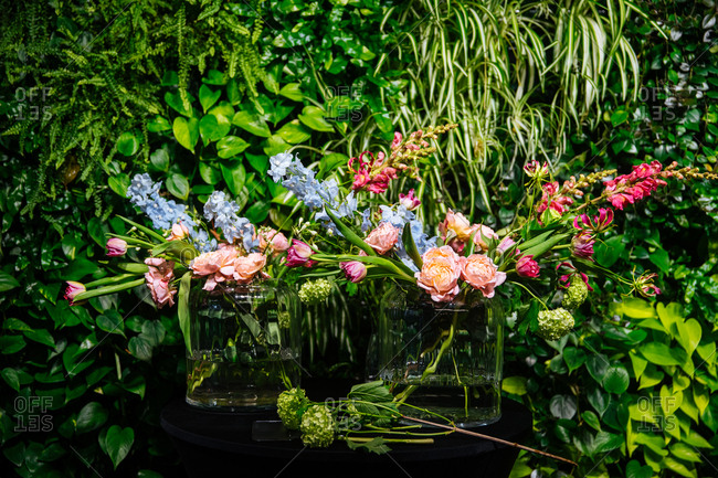 Colorful floral arrangement surrounded by greenery