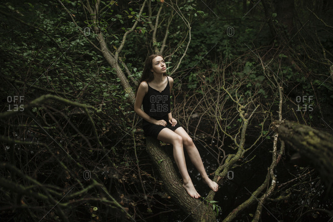 Girl sitting on a broken tree in a dense forest