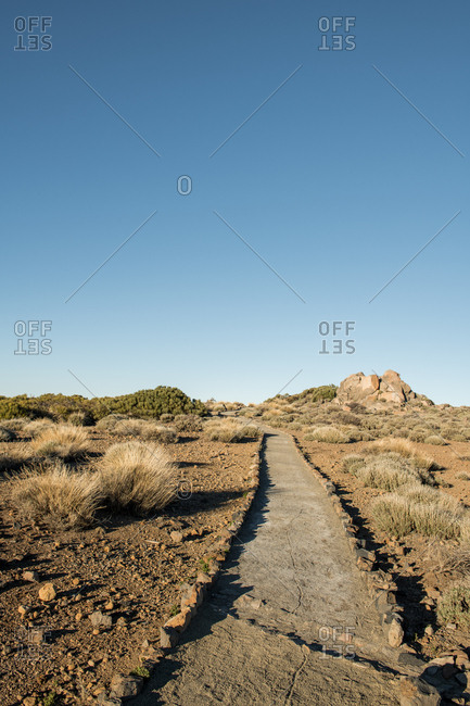 View to small path in desert with dry plants in sunny day