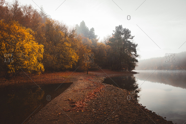 Tranquil water of lake in mist