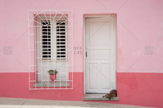 Dog napping in a doorway in Trinidad, Cuba