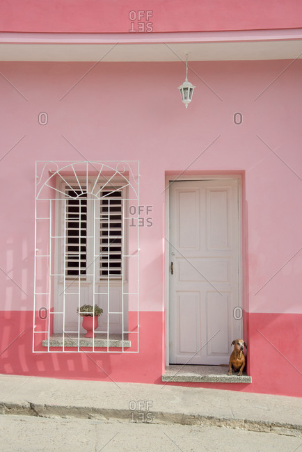 Dog in a doorway in Trinidad, Cuba