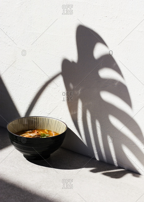 Plant shadows over a bowl of tom yum soup