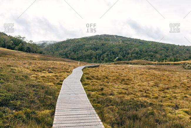 Australia- Tasmania- Cradle Mountain-Lake St Clair National Park- landscape with boardwalk