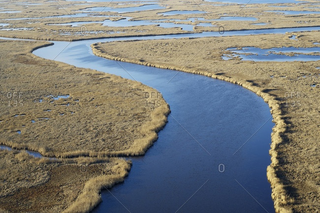 USA- Maryland- Cambridge- Blackwater National Wildlife Refuge- Blackwater River- Blackwater Refuge is experiencing sea level rise that is flooding this marsh