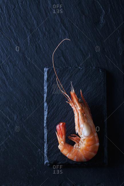 Boiled prawn on black slate