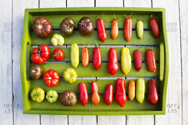 Wooden tray with various tomatoes- stage of ripeness- unripe and ripe
