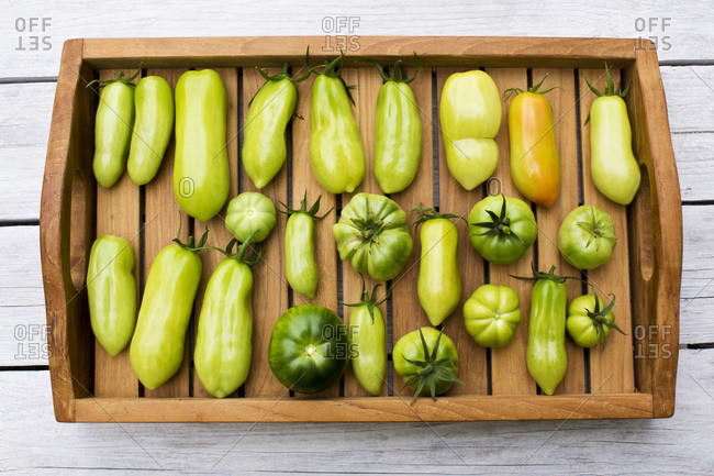 Tray with various tomatoes- stage of ripeness- unripe
