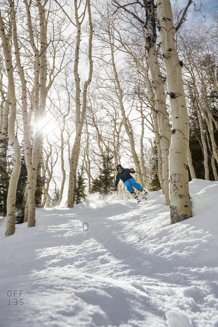 March 15, 2013: USA, Colorado, Aspen, skiing in the Aspen trees next to the Bear Paw run, Aspen Ski Resort, Ajax mountain