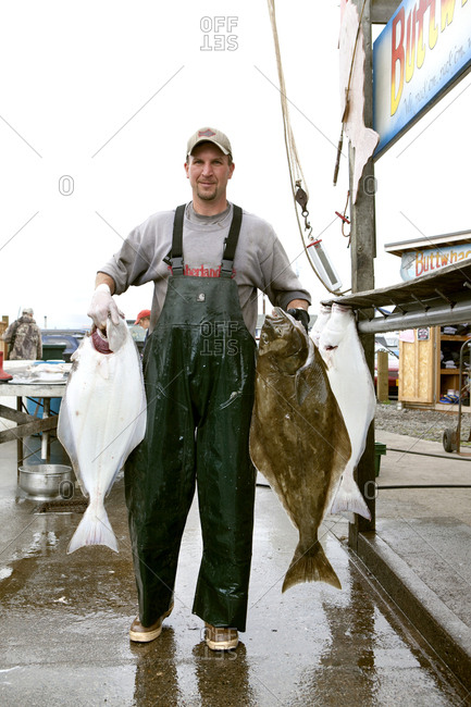 July 10, 2010: USA, Alaska, Homer, a guy who unloads and fillets halibut for Buttwhackers charters, the Homer Spit