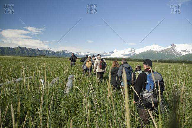 July 12, 2010: USA, Alaska, Homer, a group of hikers go on a bear viewing walk, Katmai National Park, Katmai Peninsula, Hallow Bay, Gulf of Alaska