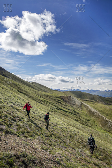June 29, 2015: USA, Alaska, Denali, Denali National Park, individuals explore around the Alaskan backcountry with experienced local naturalist Jeffery Ottners during a Helihiking tour, Cool Mountain