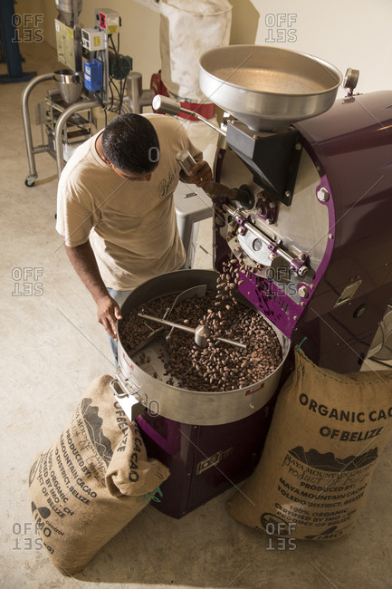 May 28, 2014: BELIZE, Punta Gorda, Toledo, guests can participate in a Bean to Cup Workshop where they'll tour the coffee plant, and be shown the process of taking a raw bean to a roasted bean, Belcampo Belize Lodge and Jungle Farm