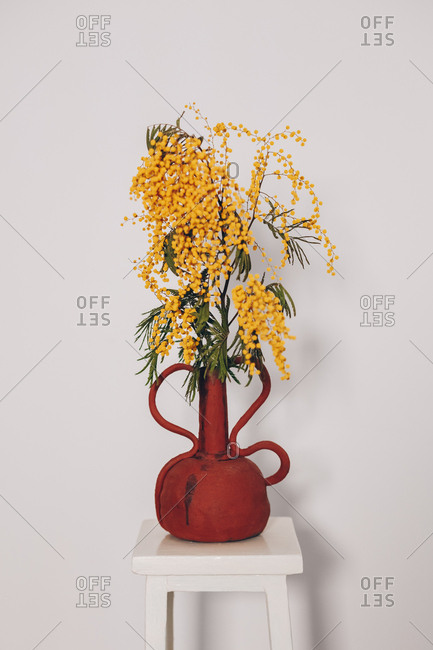Self-made ceramic vase with flowering mimosa pudica plant, in front of a white wall background. Authentic flowerpot artwork.