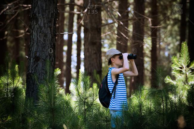 Boy looking through binoculars in woods