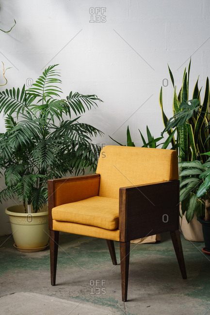 Interior of a room with yellow vintage chair and lots of plants in pots