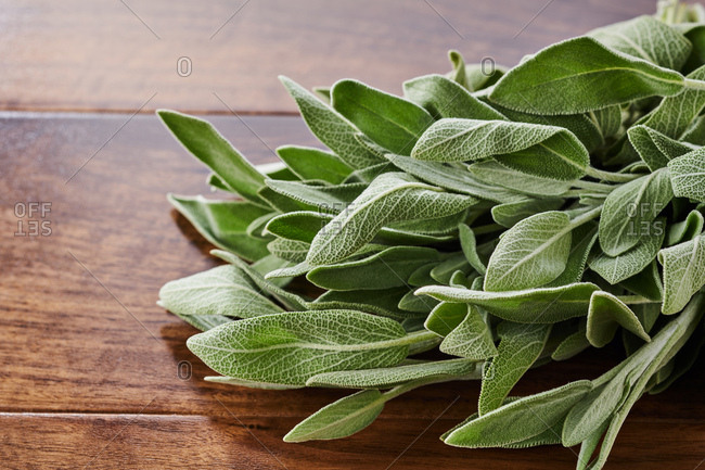 Close up of a bunch of sage on a table