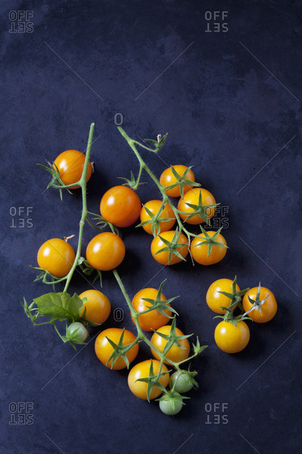 Cherry tomatoes 'Golden Nugget' on dark ground