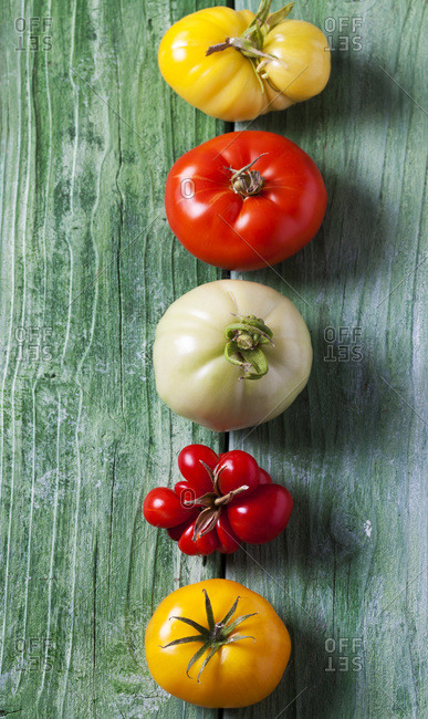 Row of five different tomatoes on green wood
